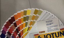 Nhận pha sơn màu Ral quốc tế (locnamviet)