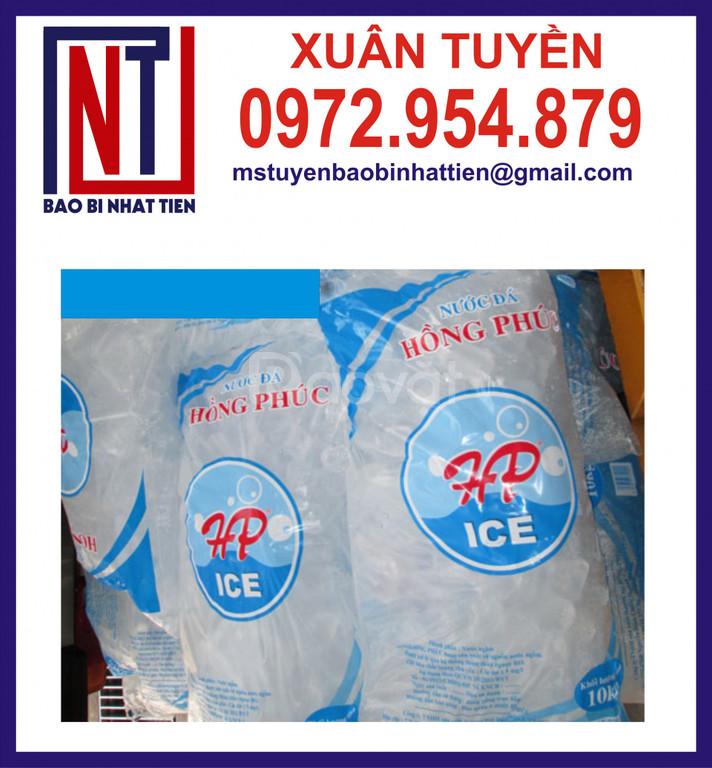 Cung cấp túi pe đựng 10kg nước đá