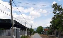 Chính chủ bán đất tại xã Ninh Sim, thị xã Ninh Hòa, dt lớn, giá tốt