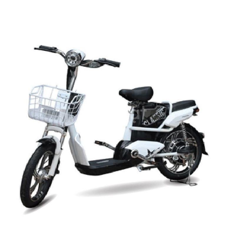 Xe đạp điện Anbico AP1705 New