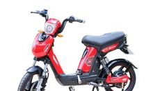 Xe đạp điện loại nào tốt giá cả hợp lý phù hợp học sinh sinh viên