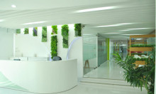 Cho thuê văn phòng ảo quận Tân Bình- Premier Office