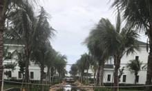 Parami Hồ Tràm – Cợ hội lớn cho nhà đầu tư thông minh
