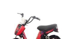 Xe đạp điện Cap A2 Pop Teen