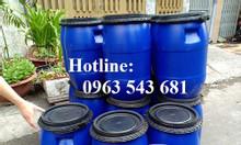 Phuy nhựa 30 lít đựng hóa chất, phuy 30 lít giá rẻ tại Hồ Chí Minh