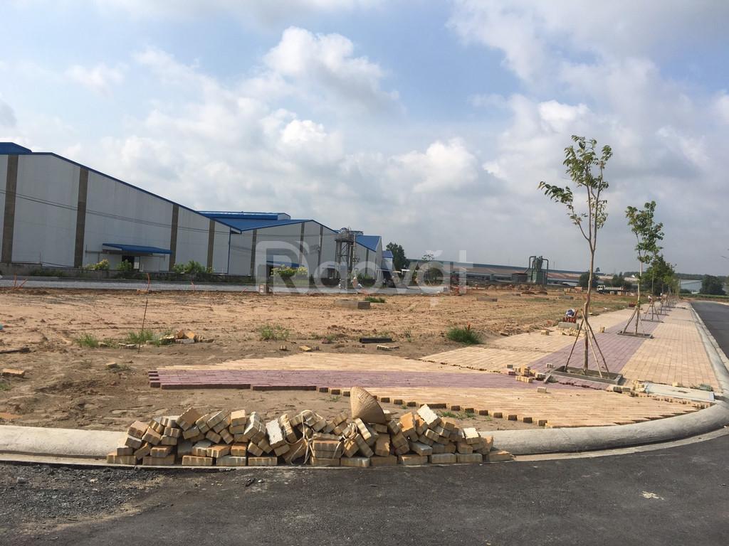 Bán đất gần trung tâm TP Thủ Dầu Một, liền kề gần chợ