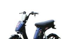 Xe đạp điện Cap A1