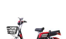 Xe đạp điện Alpha Color A8