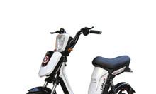 Xe đạp điện Pega Cap A9 2019