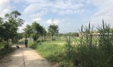 Bán đất hẻm 366 Phạm Hữu Lầu, thổ vườn dt28x50 giá đầu tư rẻ