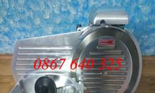 Máy thái thịt đông lạnh ES 250