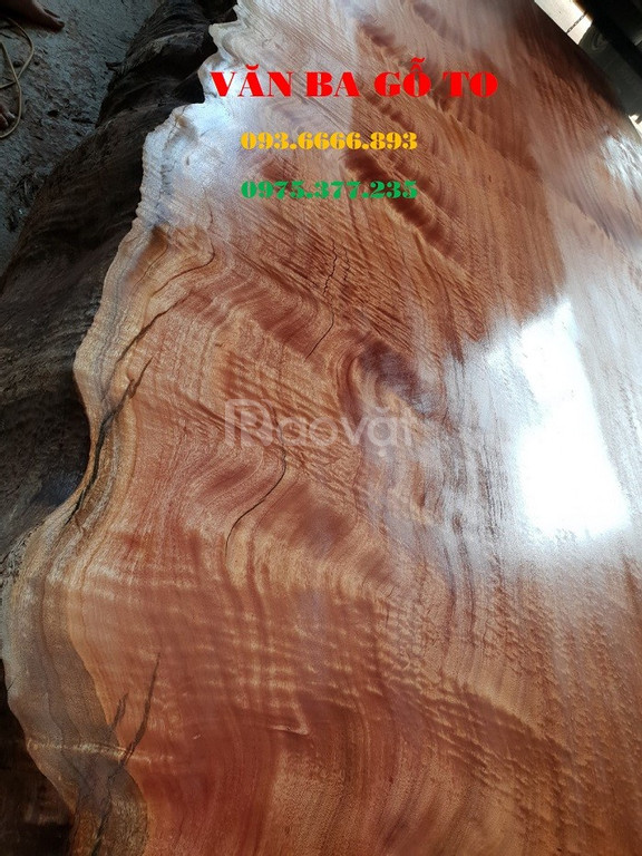 Chiếu ngựa 1 tấm gỗ lát tại Thái Bình