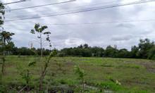 Bà con xa gởi bán 695m đất thổ vườn ngay nhà Thờ Thái Mỹ giá 1ty360
