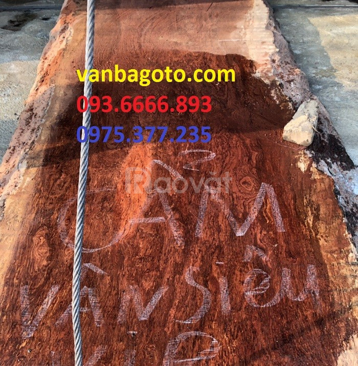 Chiếu ngựa gỗ cẩm 1 tấm 1 chiếu tại Hà Tĩnh