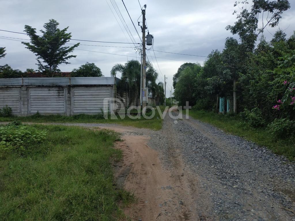 Đất Long Phước, Long Thành khu Tên Lửa dân sinh ổn định đông đúc