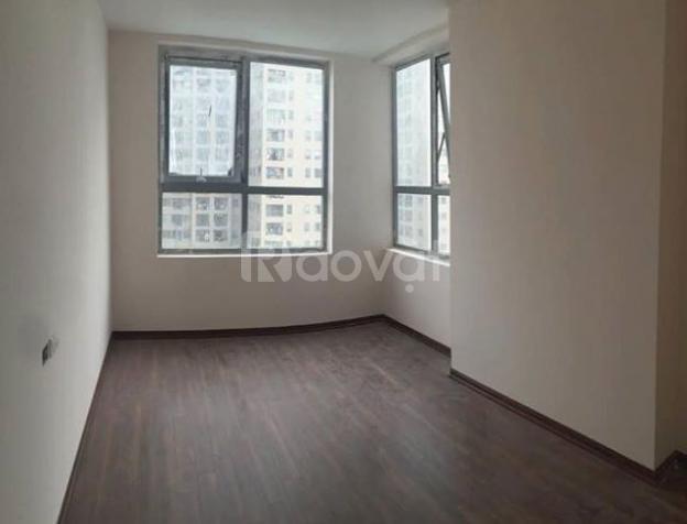Cho thuê chung cư Capital Garden 102 Trường Chinh, 90m2, giá 11 triệu