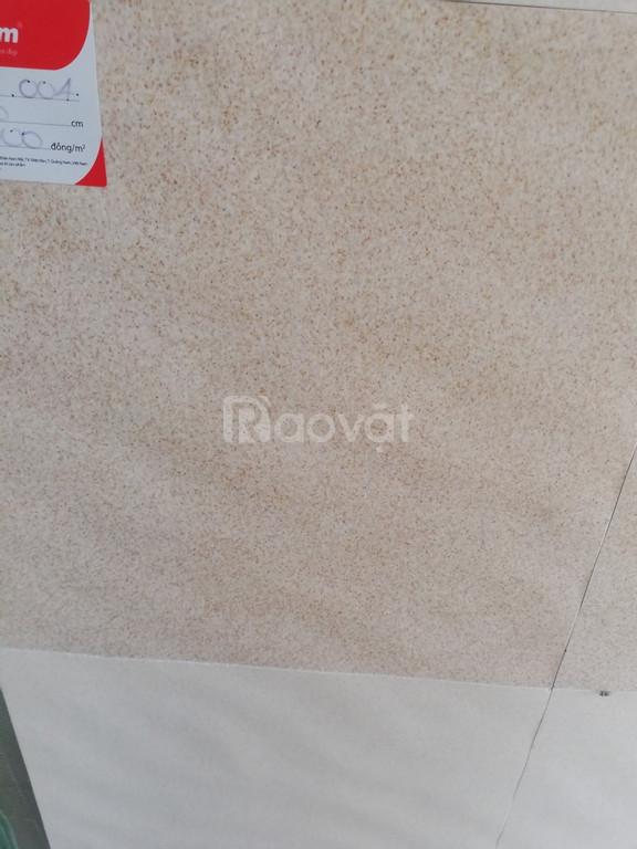 Thanh lý gạch ốp tường giá rẻ của Đồng Tâm