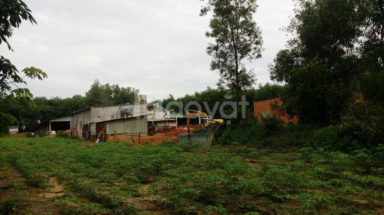Gần 3400m2 đất xã Tân Hiệp, Long Thành giá chỉ 1 triệu/m2