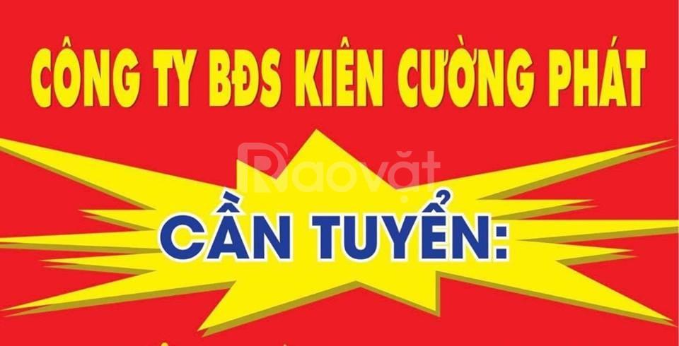 Công ty tnhh bds Kiên Cường Phát