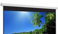 Màn chiếu điện có remote ELS300 170 Inch