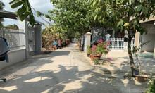 Gia đình cần bán nền đất hồng 511m2 Long Phước, Long Thành có 300 thổ