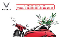 Bán xe máy điện vinfast Klara bảo hành 3 năm miễn phí