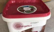 Penergetic_chuyên trị EMS, phân trắng trên tôm
