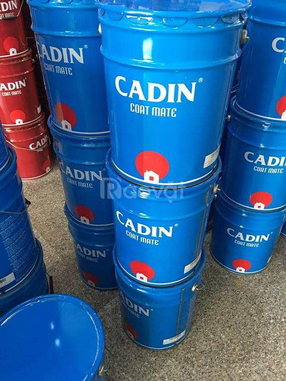 Địa chỉ bán sơn dầu Cadin màu trắng cho sắt thép giá rẻ tại HCM