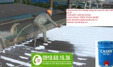 Chuyên phân phối sơn chống nóng cho mái tôn màu trắng giá rẻ