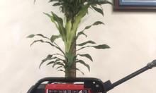 Cung cấp các dòng máy phát điện Tomikama 4800 giá rẻ