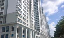 Mặt bằng saigon south residences 2 phòng ngủ diện tích 65m2 - 75m2
