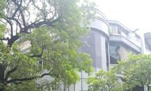 Cho thuê nhà  56 Núi Trúc DT 100m2, MT10m, giá 55tr, nhận nhà luôn