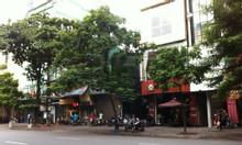 Bán nhà đẹp 6 tầng MP Nguyễn Trãi, thang máy, vỉa hè rộng, kinh doanh.