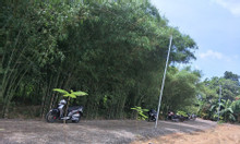 Đất nền phân lô KDC Sông Trầu, Trảng Bom, pháp lý đầy đủ giá chỉ 165tr