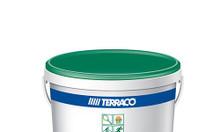 Chuyên thi công sơn sân tennis Terraco
