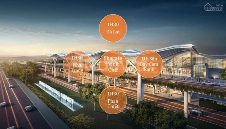 Đất nền, sổ đỏ sát biển Ninh Thuận tiềm năng tăng giá cao