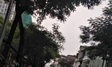 Bán nhà mặt phố Quán Thánh, Ba Đình, giá tốt, 35m2,4 tầng, 15 tỷ