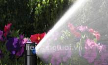 Thiết kế hệ thống tưới cỏ, béc phun nước tưới cỏ, béc phun nước