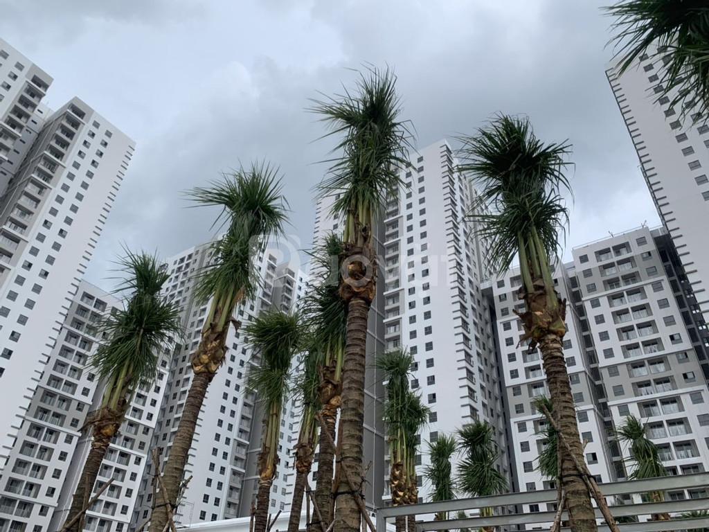 Bán căn hộ chung cư SSR Nhà Bè diện tích 87m2 block B view sông