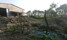 Bán 710m2 đất giá rẻ Thành Phố Phan Rang