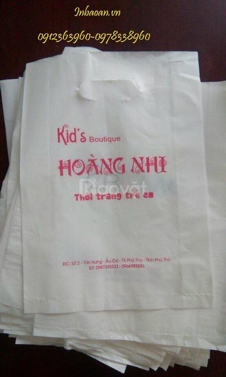 In túi nilon giá rẻ, thiết kế túi nilon miễn phí