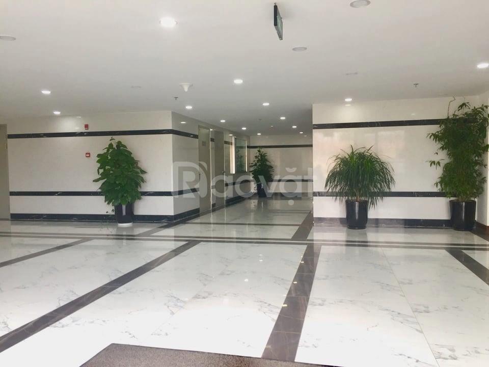 Cho thuê 139m VPTM tại Hoàng Cầu kinh doanh văn phòng đỉnh