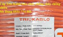 Cáp âm thanh chuyên nghiệp lõi mềm 2x2.5mm2 Trio Kablo