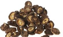 Thu mua nấm hương sấy khô và các loại nấm sấy khô trên toàn quốc