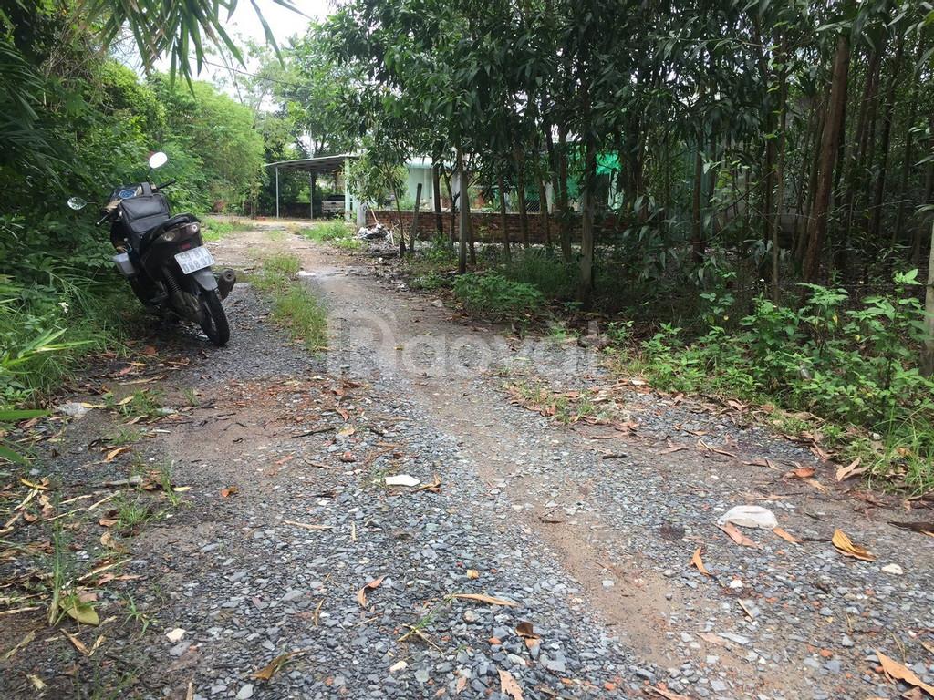 Bán đất giá rẻ tại nhánh đường TL 769, xã Lộc An, Long Thành, Đồng Nai