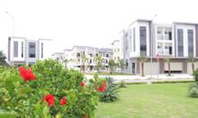 Bán nhà dự án centa city Bắc Ninh sổ hồng vĩnh viễn