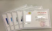 Trường Cao Đẳng Văn Lang cấp chứng chỉ văn thư lưu trữ