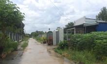 Tháng 7 bán lỗ 1005.5m2  đất Bàu Cạn giá rẻ lấy vốn làm ăn