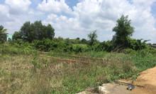 Cần bán miếng đất thổ cư 96m2 Cần Giuộc, Long An