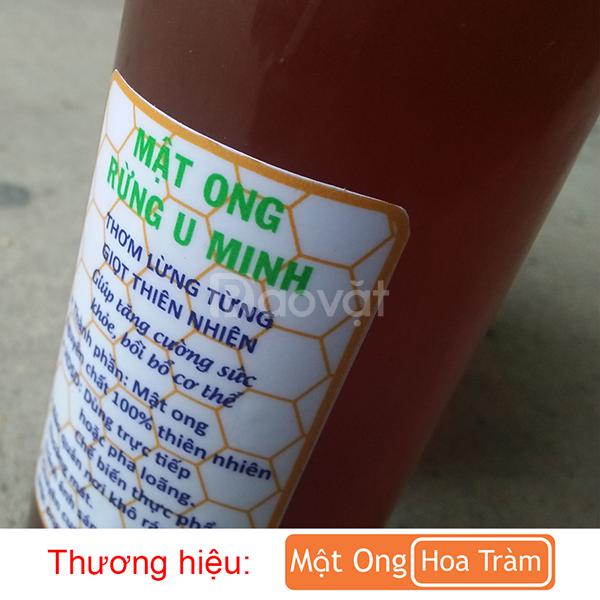 Mật ong rừng nguyên chất, đặc sản rừng tràm U Minh Cà Mau 500ml